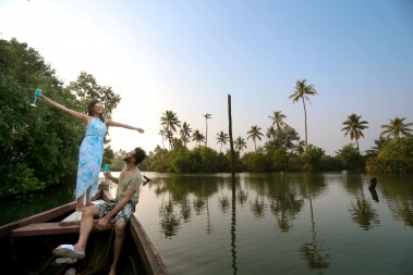 Mangrove_forest_backwater_Hotel_in_Kerala.jpg